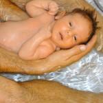 http://www.babyswimming.com/images/Alex_Swim.jpg