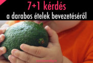 7+1 kérdés a darabos ételek bevezetéséről